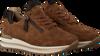 Cognac GABOR Lage sneakers 528  - small
