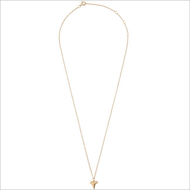 Gouden ALLTHELUCKINTHEWORLD Ketting SOUVENIR NECKLACE TOOTH - large