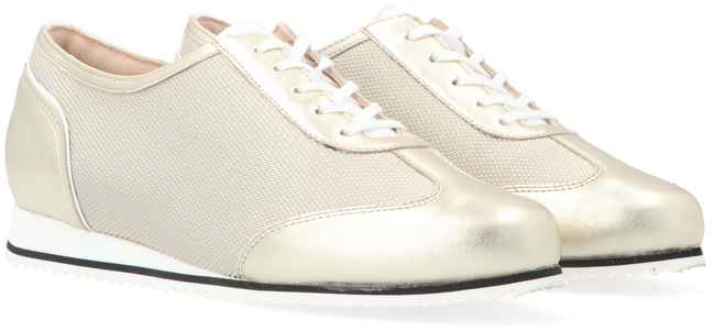Witte HASSIA Lage sneakers PIACENZA 1658  - large