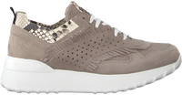 Taupe NOTRE-V Sneakers AG283  - medium