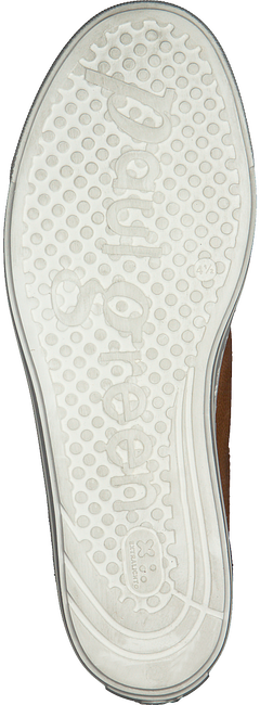 Camel PAUL GREEN Lage sneakers 4841 - large