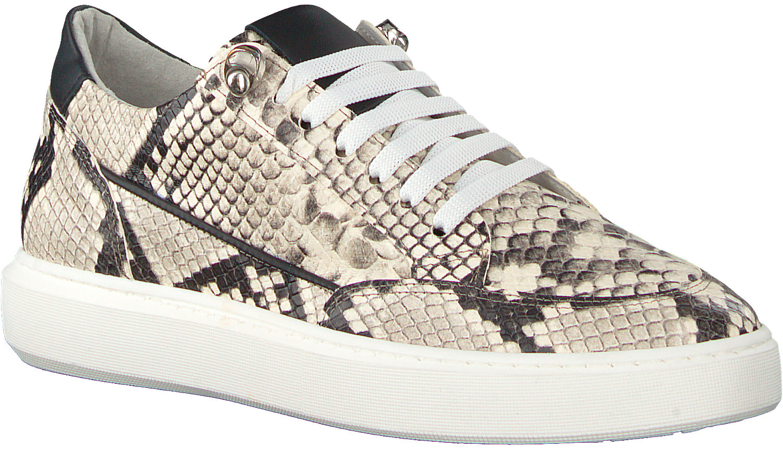 4ae5f1d0f00 Beige Verton Sneakers 0036 - Omoda.nl