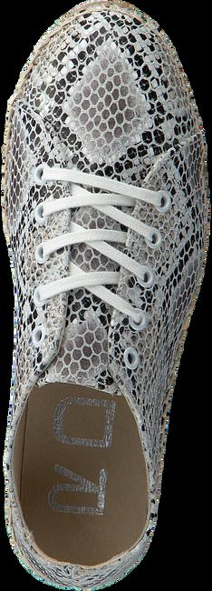 Beige ROBERTO D'ANGELO Sneakers NEPAL  - large