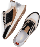 Zwarte PIEDI NUDI Sneakers 2507-03  - medium