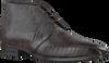 Bruine GIORGIO Nette schoenen HE50209  - small