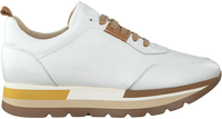 Witte ROBERTO D'ANGELO Lage sneakers MOTO  - medium