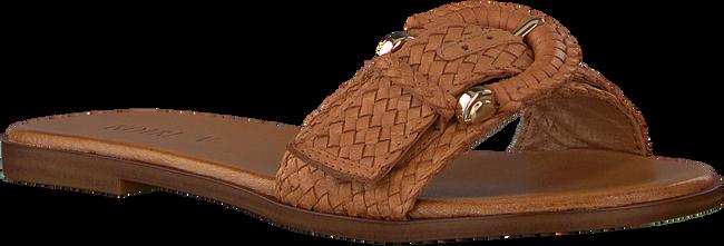 Cognac NOTRE-V Slippers 443019  - large