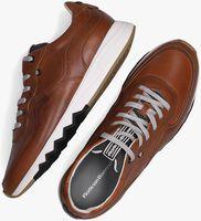 Cognac FLORIS VAN BOMMEL Lage sneakers 16397  - medium