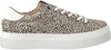 Beige MARUTI Sneakers TED - small