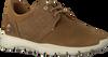 Taupe PANAMA JACK Lage sneakers JULIUS  - small