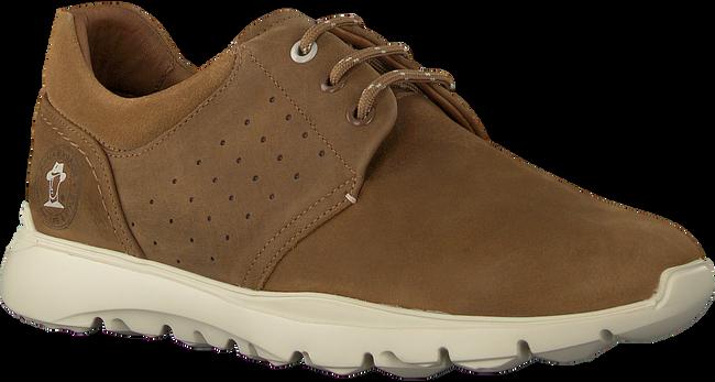 Taupe PANAMA JACK Lage sneakers JULIUS  - large