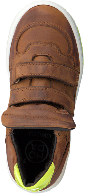 Cognac OMODA Sneakers 52010  - large