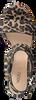 Bruine NOTRE-V Sandalen 051- 514  - small