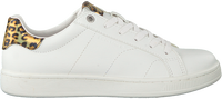 Witte BJORN BORG Lage sneakers T305 IRD LEO  - medium