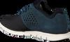 Blauwe TIMBERLAND Sneakers BRADSTREET F/L OXFORD  - small