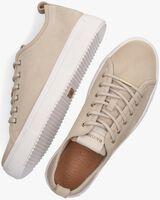 Beige BLACKSTONE Lage sneakers PL97  - medium