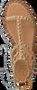 Bruine ASH Sandalen PLAY - small