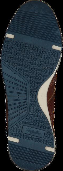 AUSTRALIAN LAGE SNEAKER GRANT - large