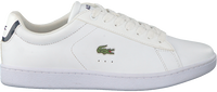 Witte LACOSTE Sneakers CARNABY EVO DAMES  - medium