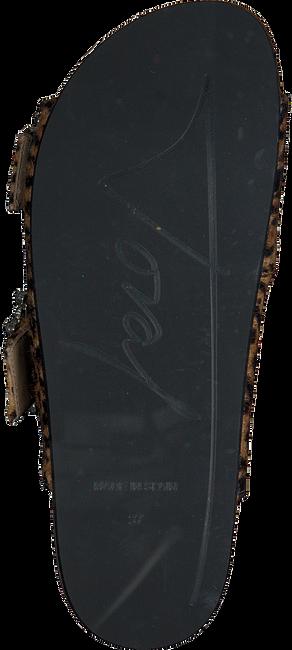 Zwarte TORAL Slippers 10865  - large