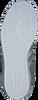 Grijze ADIDAS Sneakers SUPERSTAR DAMES  - small