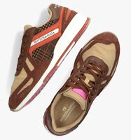 Bruine SCOTCH & SODA Lage sneakers VIVEX LOW  - medium
