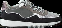 Zwarte FLORIS VAN BOMMEL Lage sneakers 16093  - medium