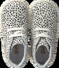 Witte FALCOTTO Babyschoenen 1195 - small