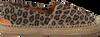 Bruine VIA VAI Espadrilles 4809074 - small