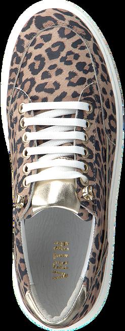 Bruine Verton Sneakers 0036  - large
