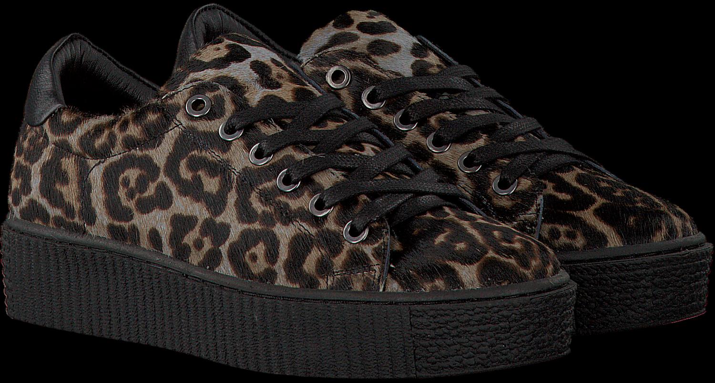 Sneakers nl Bruine Maruti Omoda Cato wSxwA0Y5