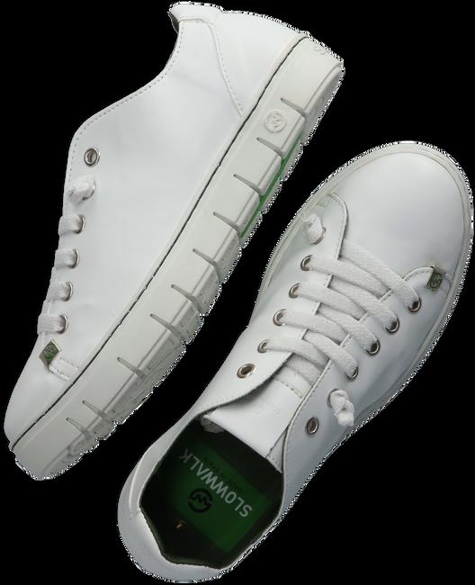 Witte SLOWWALK Lage sneakers KRAZ  - large