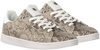 Taupe MEXX Lage sneakers EEKE  - small