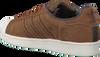 Cognac ADIDAS Sneakers SUPERSTAR HEREN  - small
