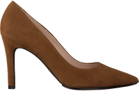 Cognac LODI Pumps RACHEL-TP  - medium