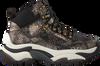 Zwarte ASH Sneakers ALFA  - small