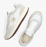 Witte GANT Sneakers BEVINDA 2B  - medium