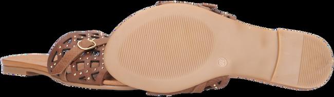 Bruine NOTRE-V Slippers 10301  - large