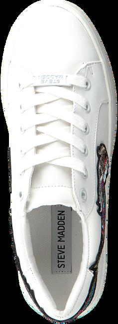 Witte STEVE MADDEN Sneakers BERTIE-D  - large