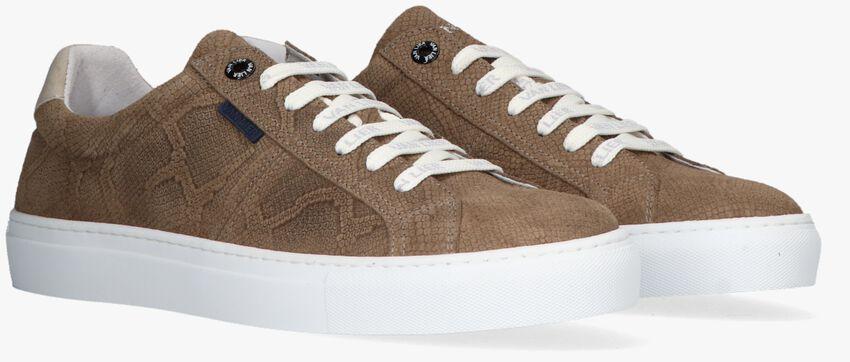 Bruine VAN LIER Lage sneakers NOVARA - larger