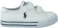 Witte POLO RALPH LAUREN Sneakers SLATER  - medium