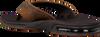 Bruine REEF Slippers FANNING dKpkuaxN