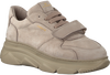 Grijze COPENHAGEN STUDIOS Lage sneakers CPH41  - small
