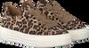 Beige GABOR Sneakers 464 - small