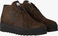 Bruine MARUTI Hoge sneakers TRIX  - medium