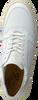 Witte SCOTCH & SODA Lage sneakers BRILLIANT  - small