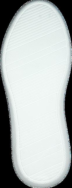 Beige OMODA Lage sneakers INGEBORG - large