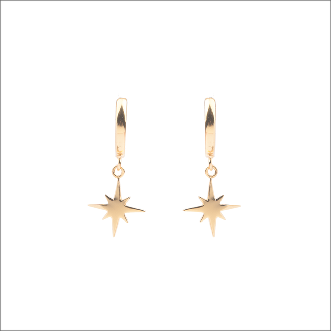 ALLTHELUCKINTHEWORLD OORBELLEN SOUVENIR EARRINGS STAR BURST - large