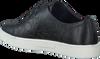Zwarte CALVIN KLEIN Sneakers IMILIA  - small