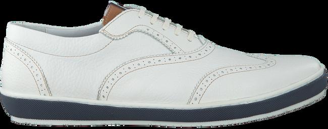 Witte FLORIS VAN BOMMEL Sneakers 19036  - large